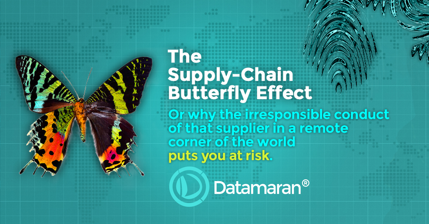 The Supply-Chain Butterfly Effect