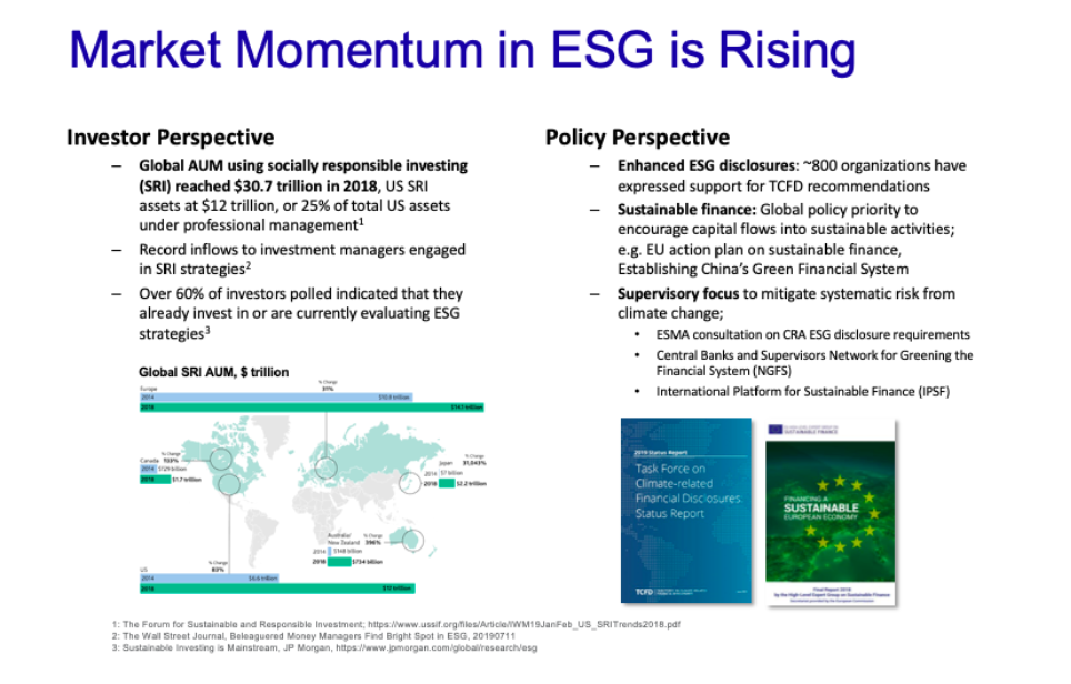 Market momentum in ESG is risking