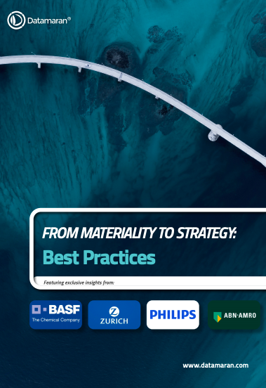Case Study Ebook 2020 - Best Practices in Corporate Materiality