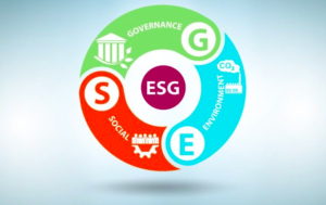 How CFOs Should Assess Materiality in ESG